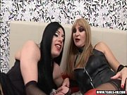 Picture Shemale and transsexual fucking