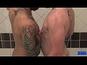 Picture BreedMeRaw - Butch Bloom and Draven Torres