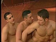Picture Gymnastic loving muscled studs threesome tig...