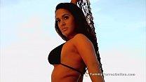 Tammy Torres