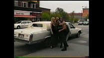 WILD day at the limousine and sexfair