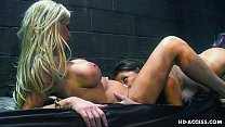Naughty lesbian gals indulge in oral sex