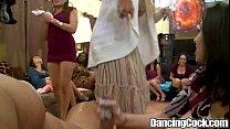 Dancingcock Bear Fiesta