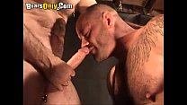 Daddy Bear Gets Himself A Nice Playmate