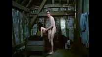 BarnGlimpse - John McLaren