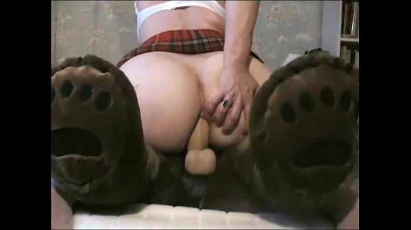 guy fucking teddy bear