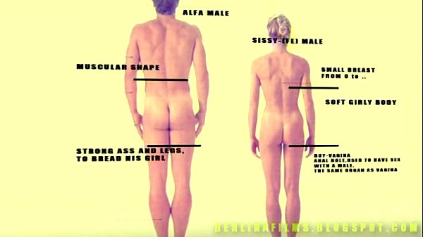 Anatomy of a sissy