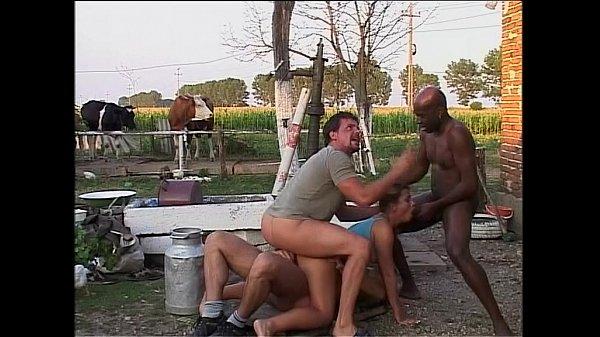 sex lindau sex auf dem bauernhof