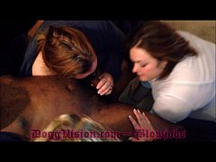 DoggVision.com ~ Blowjobs ~ C33bdogg