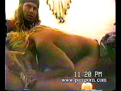 bret michaels pamela anderson sex tape