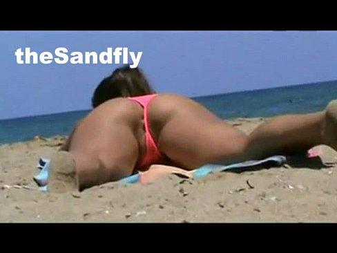 Thesandfly sun means fun
